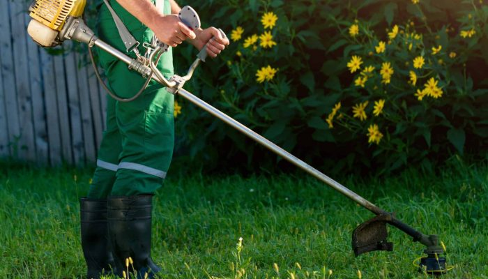 Grün- & Graupflege Gartenanlagen Gartenbau Gartengestaltung Rasenmähen Rasenerneuerung Rollrasen Heckenschneiden Laubbeseitigung Unkrautbeseitigung Baumfällung Pflege Natursteinarbeiten